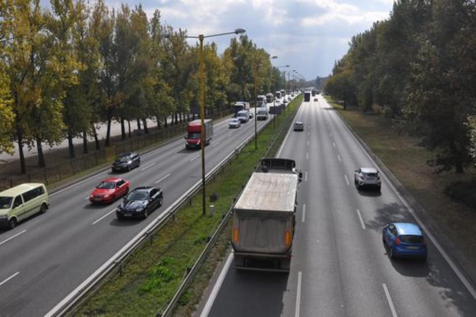 Udrożnią przejazd przez Częstochowę, ale obędzie się bez wielkich strat w zieleni