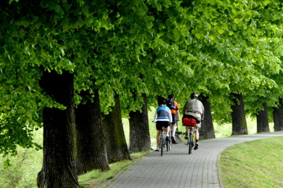 Słubice zbudują ścieżkę rowerową do Pamięcina