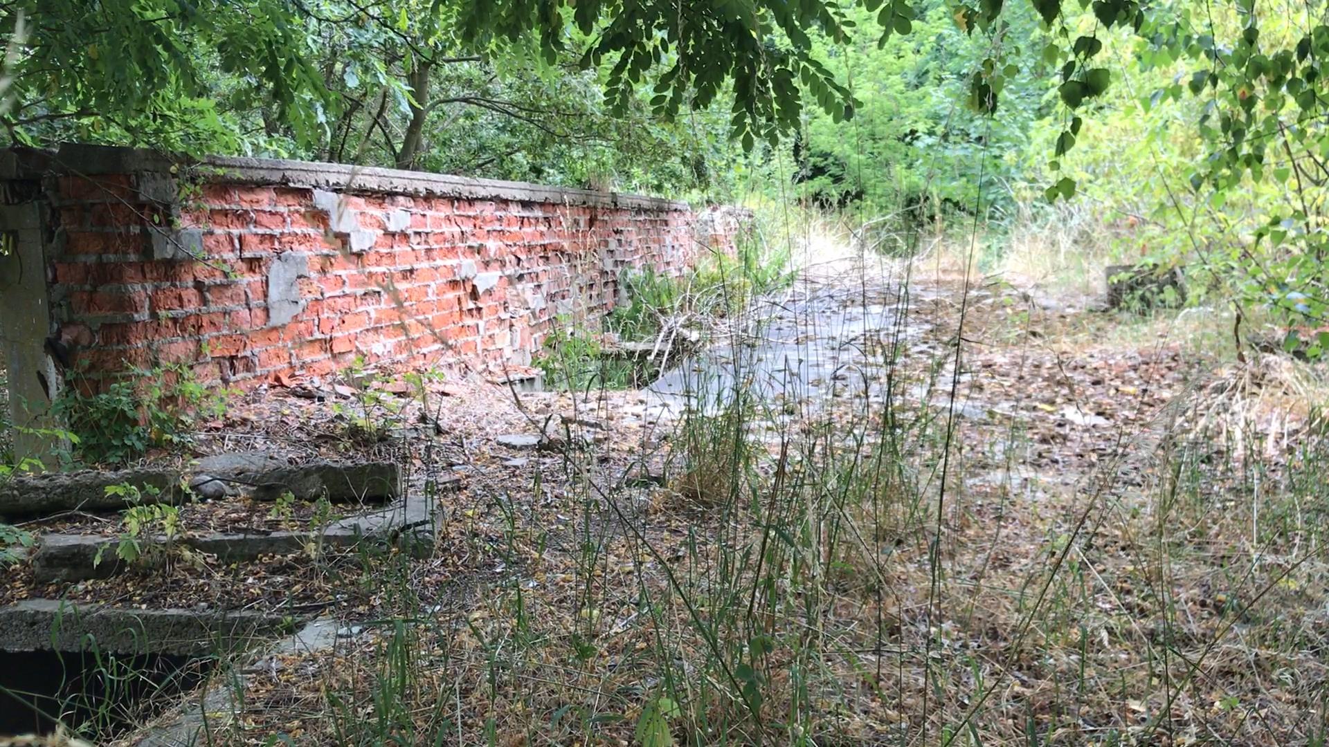 Cały teren ma około 60 ha (Fot. Poznan.pl)