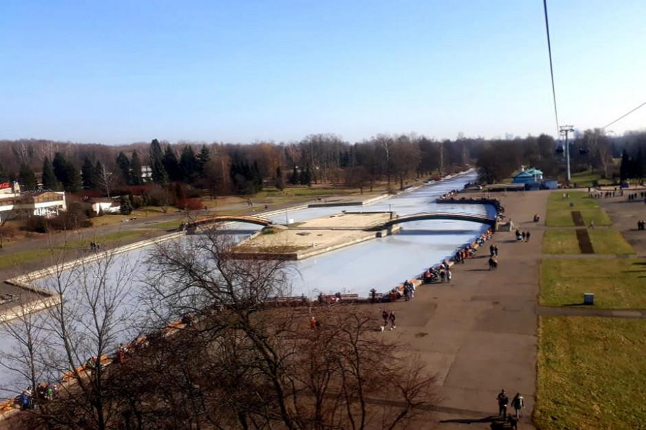 Chorzów zgodził się na wycinkę 1327 drzew przy Parku Śląskim. Marszałek protestuje