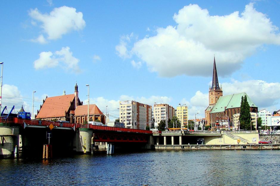 Mewa bogatsza w Szczecinie