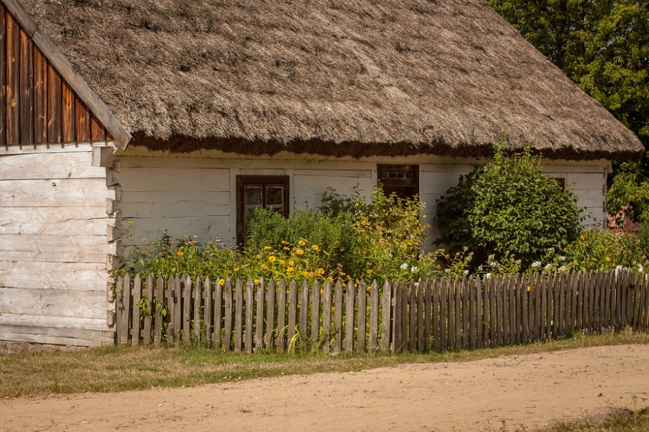 Polska Izba Turystyki: rodziny z dziećmi najczęściej wybierają agroturystykę