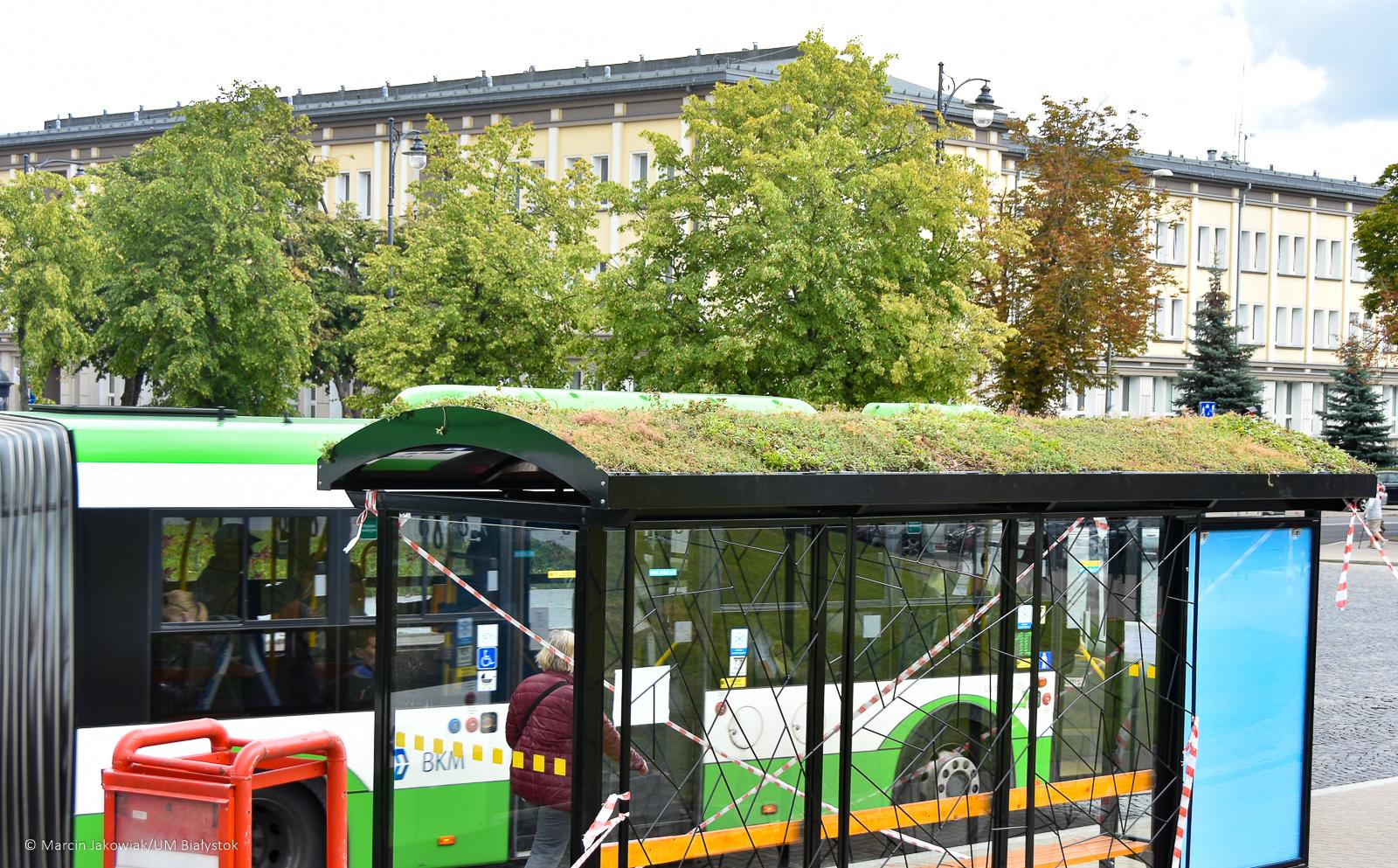 W Białymstoku trwa montaż zielonych przystanków (fot. UMB)