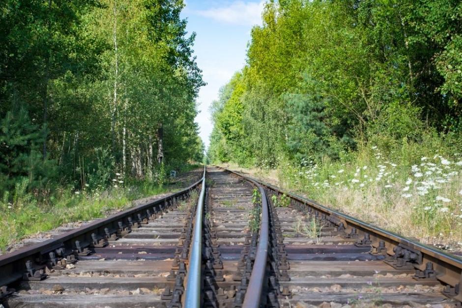 Bełchatów chce wrócić na kolejową mapę Polski