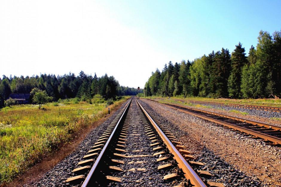Kolej modernizuje przystanki między Cieszynem a Zebrzydowicami