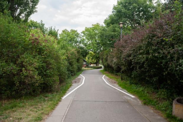 Zwężenie drogi dla rowerów na Polu Mokotowskim (fot. zgm)