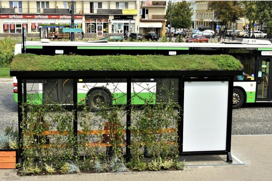 Białostocczanie polubili zielone przystanki. Wkrótce stanie kolejny