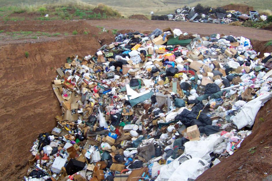 Opublikowano nowelę ustawy o czystości i porządku w gminach