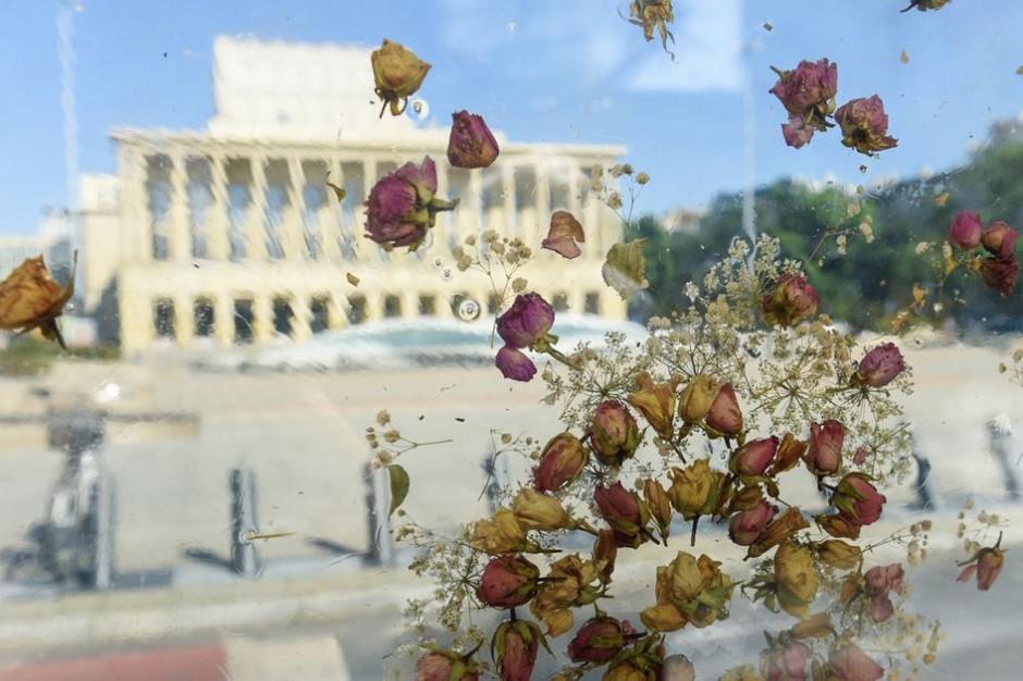 W mieście stanęła niezwykła wiata zbudowana z kwiatów zatopionych w bezbarwnej żywicy