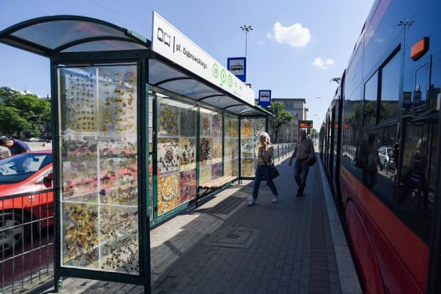 Niezwykły przystanek (fot. lodz.pl)