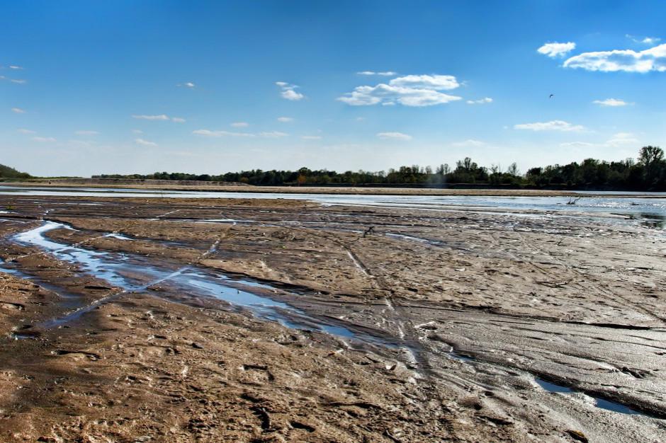 Ekolog: ścieki w Wiśle większym zagrożeniem dla środowiska niż dla człowieka
