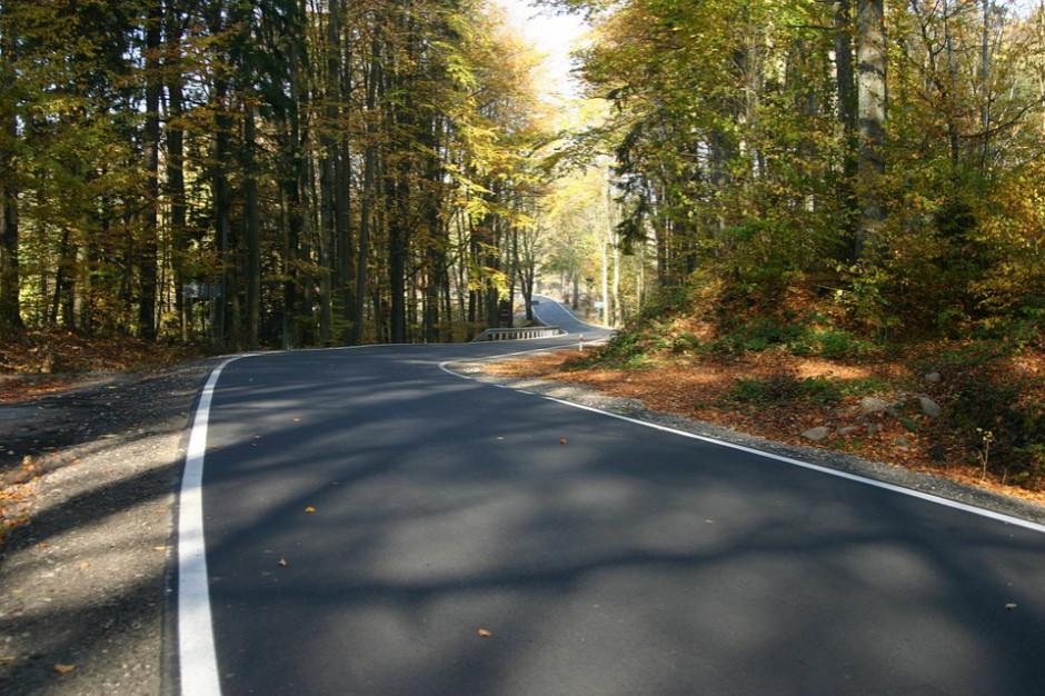Minister infrastruktury zatwierdził inwestycje na drogi - ponad 150 mln zł