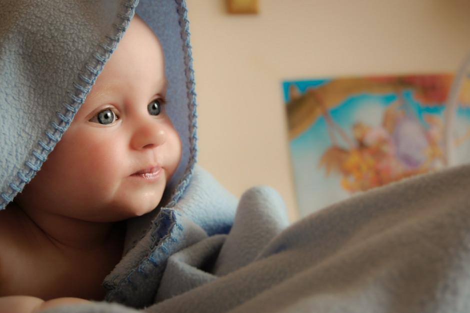 Poznań oferuje seniorom darmowe sprzątanie nagrobków i zleca im tulenie noworodków