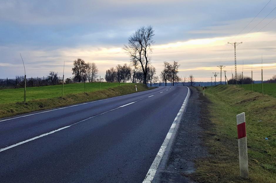 NIK: Budowa drogi S19 - na razie bez wybojów