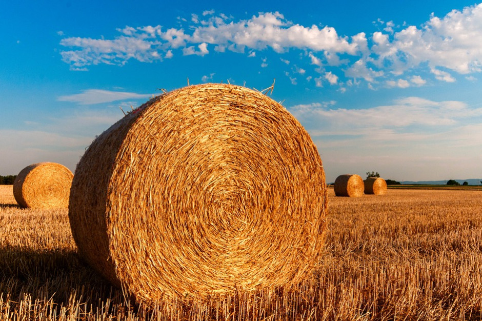 Specustawa ułatwiającą wydatkowanie środków UE w rolnictwie z podpisem prezydenta