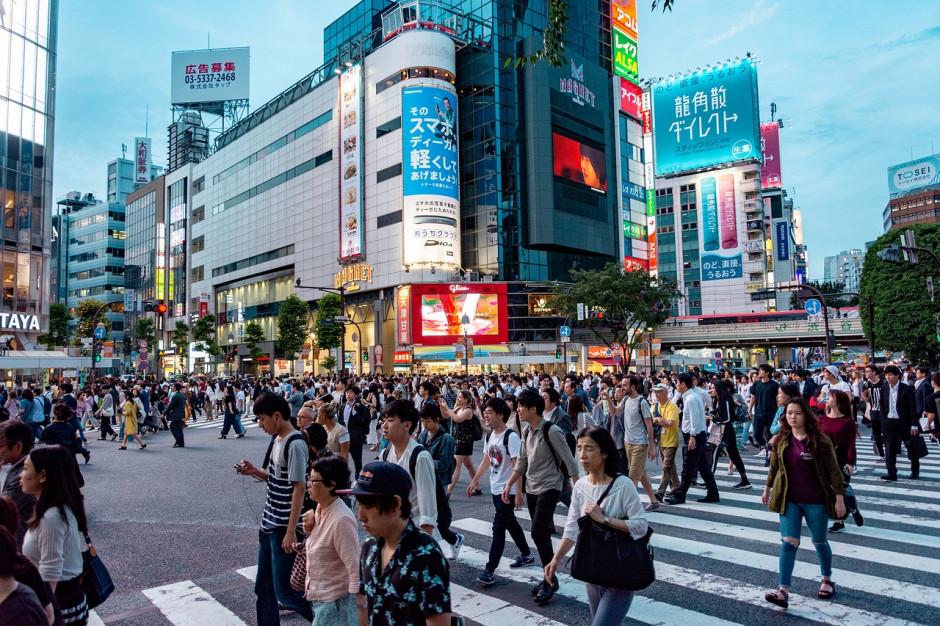 Rząd Japonii funduje stypendium dla pracowników administracji publicznej: terminy, warunki