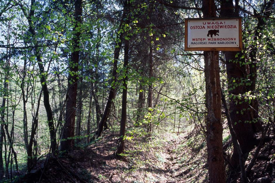 Dobre warunki turystyczne w Beskidach