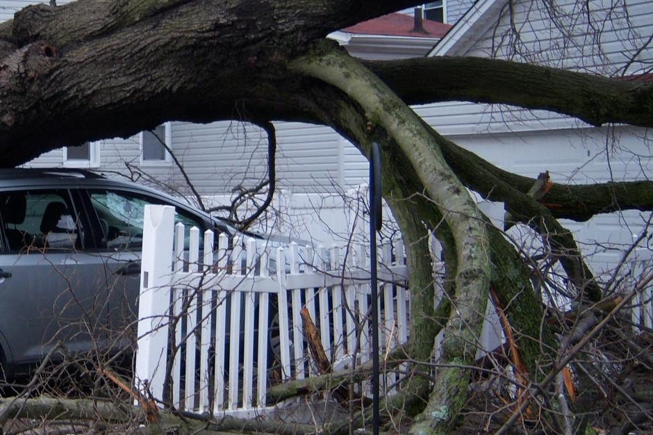 Podkarpackie: Uszkodzone dachy i połamane drzewa po wichurach. Jedna osoba nie żyje