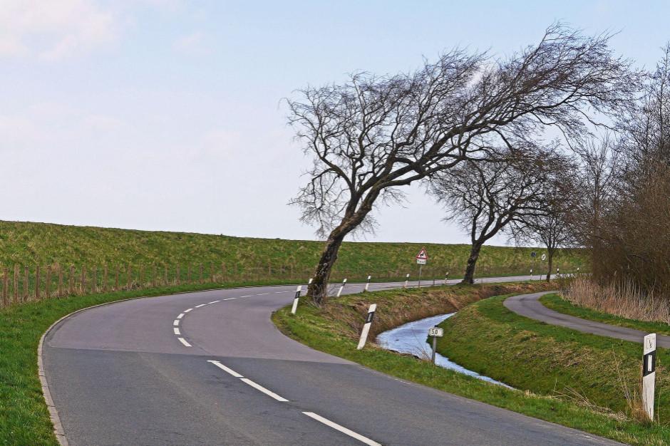 IMGW ostrzega: silny wiatr na południu Śląska, Małopolski i Podkarpacia