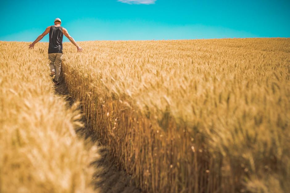 Ustawa o przeciwdziałaniu skutkom suszy w konsultacjach. Poznaj szczegóły