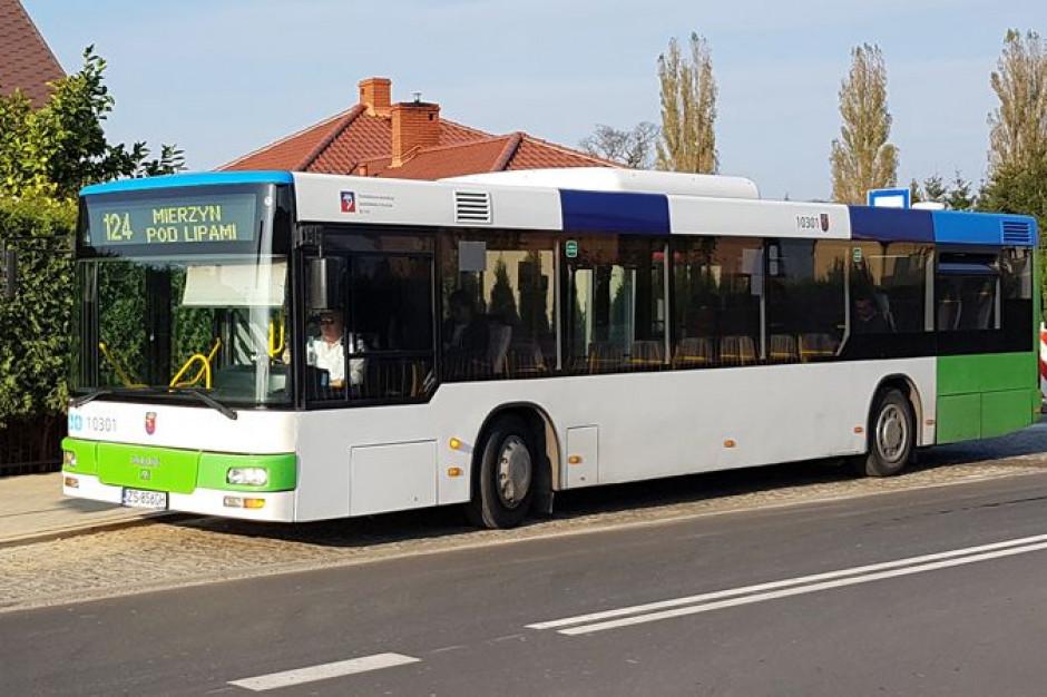 Analiza komunikacji autobusowej w gminie Dobra