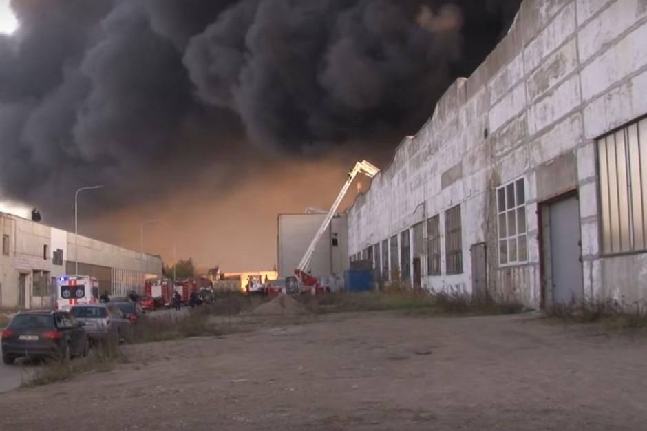 Pożar odpadów w Alytus. Inspekcja Ochrony Środowiska pomaga Litwinom