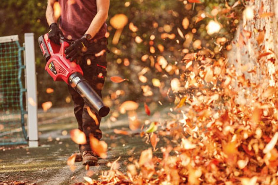 Co z zakazem używania dmuchaw do liści?