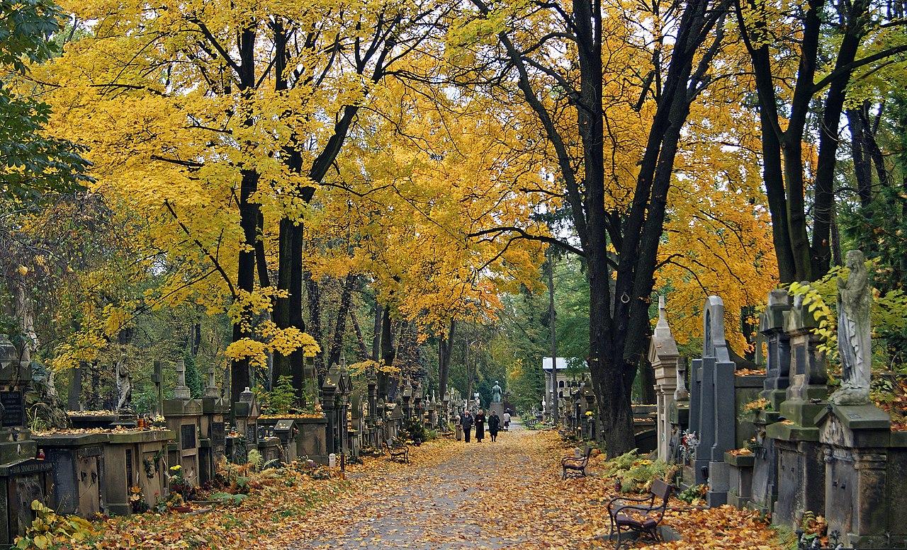 Cmentarz Rakowicki w Krakowie (fot. wikipedia.org/ Zygmunt Put - praca własna)