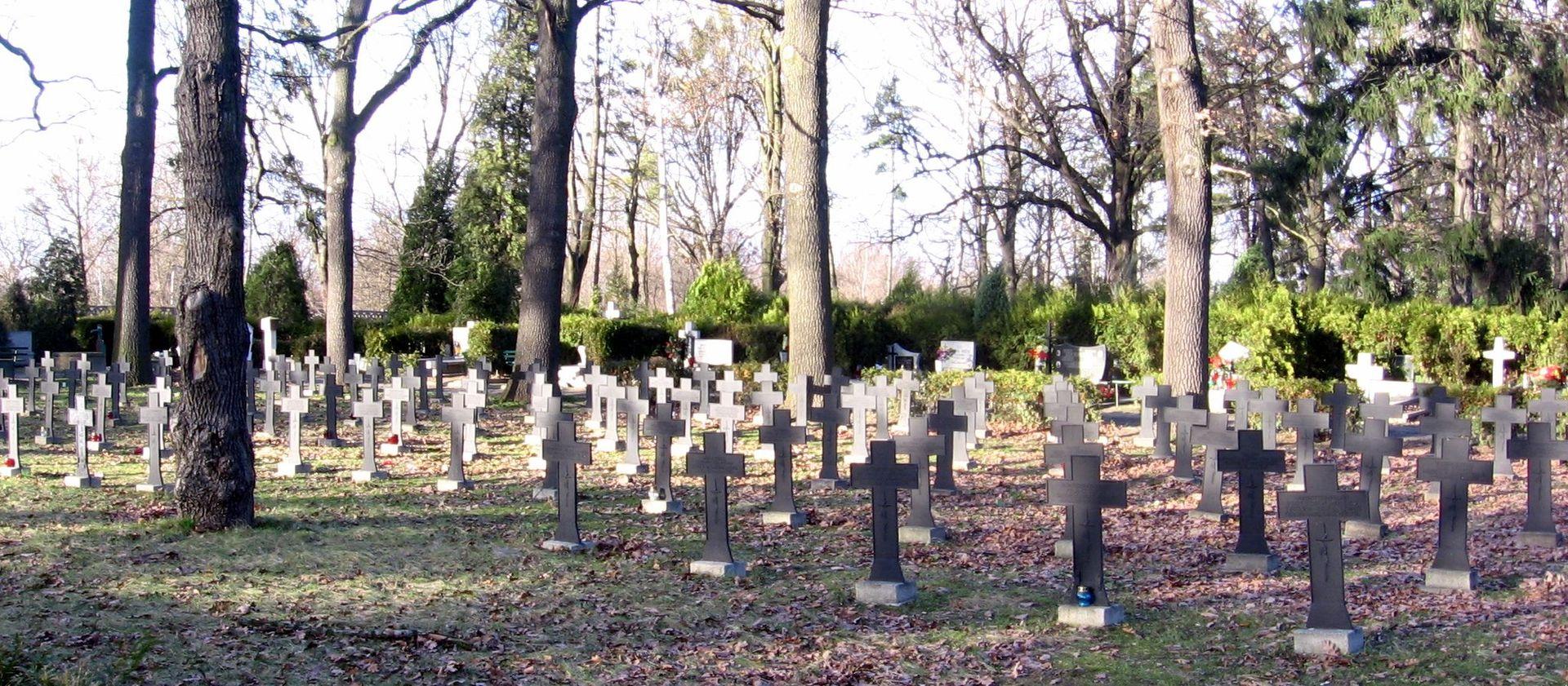 Cmentarz Osobowicki we Wrocławiu (fot. wikipedia.org/Julo - praca własna)