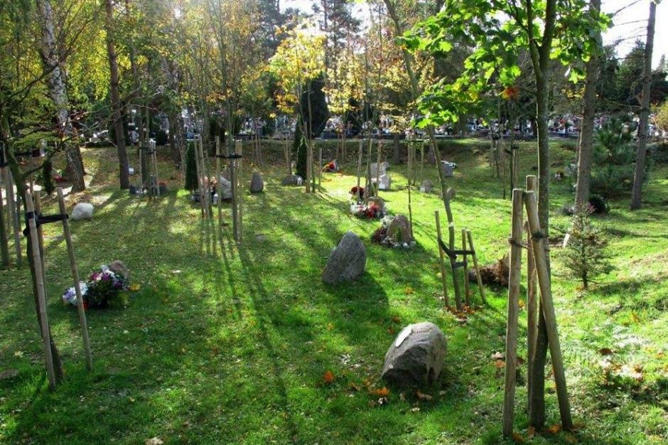 Są takie cmentarze. Głaz zamiast pomnika