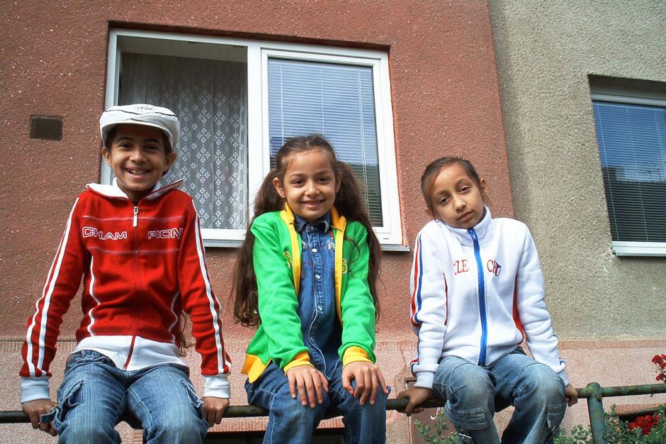 Język romski i Romowie. Zamiast święta potrzeba integracji