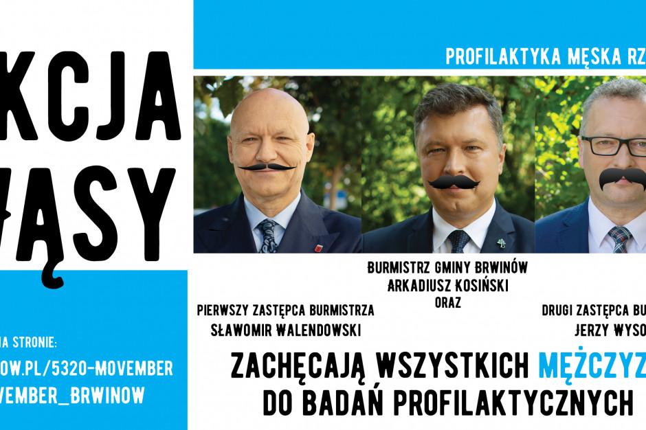 Burmistrzowie Brwinowa zapuszczają wąsy, żeby zachęcić mężczyzn do badań profilaktycznych