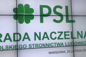 Piotr Zgorzelski kandydatem PSL na wicemarszałka Sejmu