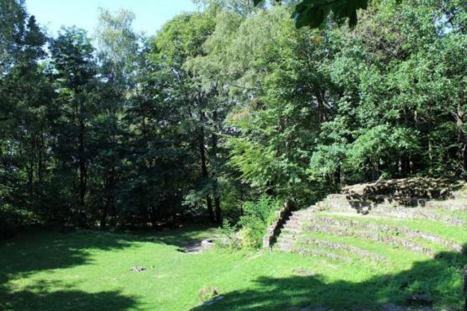 Dwie oferty na rewitalizację leśnego amfiteatru w Bielsku-Białej