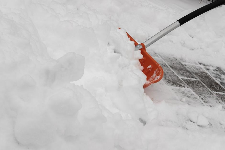 Przyczyną katastrofy był śnieg zalegający na dachu hali (fot. pixabay)