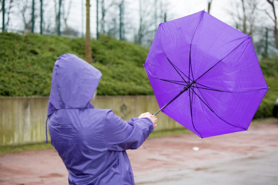 IMGW ostrzega przed silnym wiatrem w czterech województwach na południu