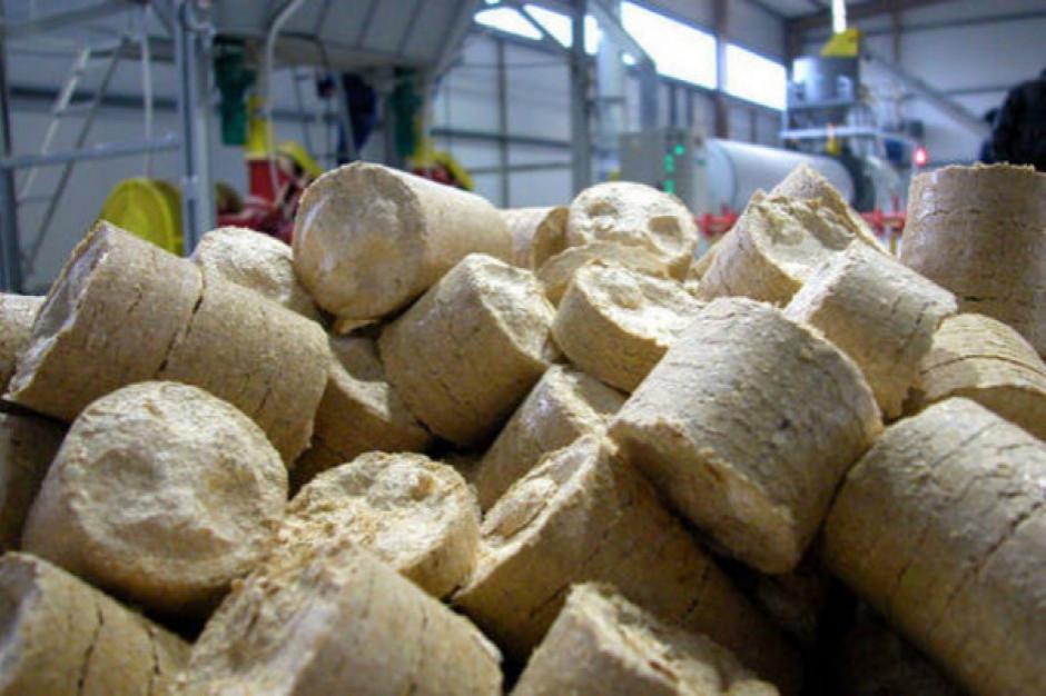 W elektrociepłowni w Krośnie ruszył montaż kotła na biomasę