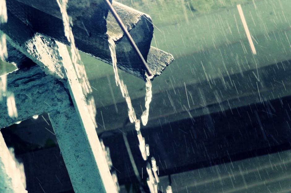 Sosnowiec planuje dotacje do 4 tys. zł na zbieranie deszczówki