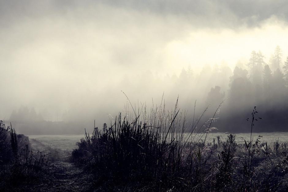 IMGW ostrzega przed mgłami w pięciu województwach