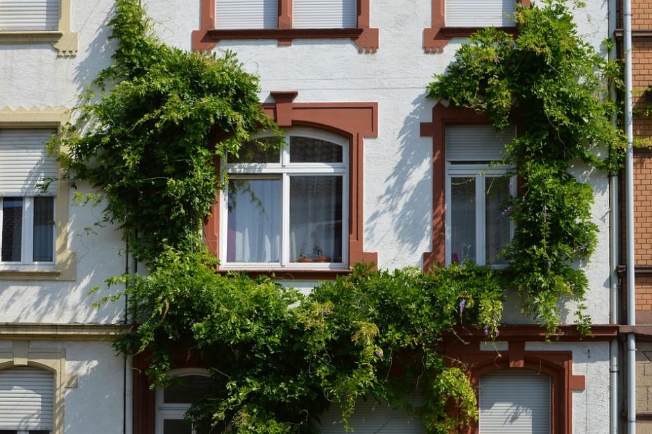 Konkurs Eco-Miasto: Pochwalcie się ekologicznymi inwestycjami