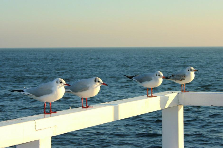 Pomorze zainwestuje w turystykę wodną