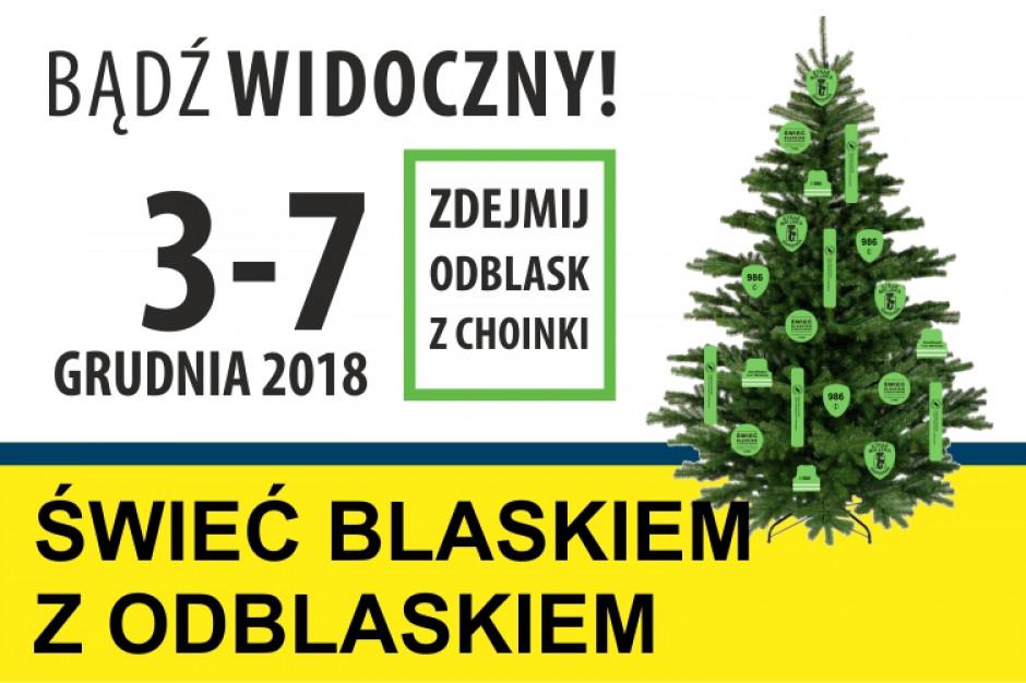 Warszawa: Na świerkach pojawią się darmowe odblaski