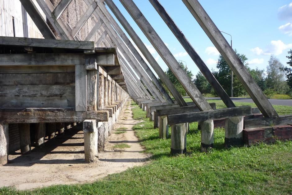 Gliwice wybierają wykonawcę tężni solankowej w lesie komunalnym
