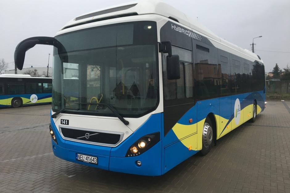Pierwsze autobusy hybrydowe Volvo trafiły do Ełku
