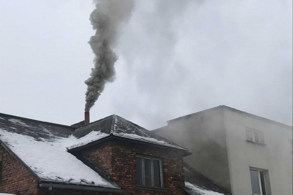 """Anna Dymna w kolejnej odsłonie kampanii """"Nie truj sąsiada"""""""