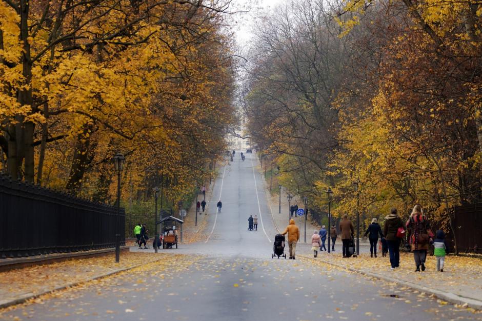 Niebezpieczne miejsca na drogach przy szkołach będą eliminowane