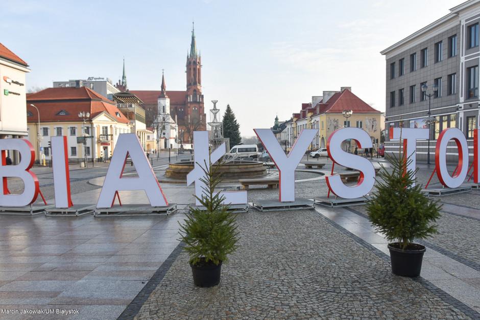 Białystok: Samorząd wymieni sztuczne choinki na żywe