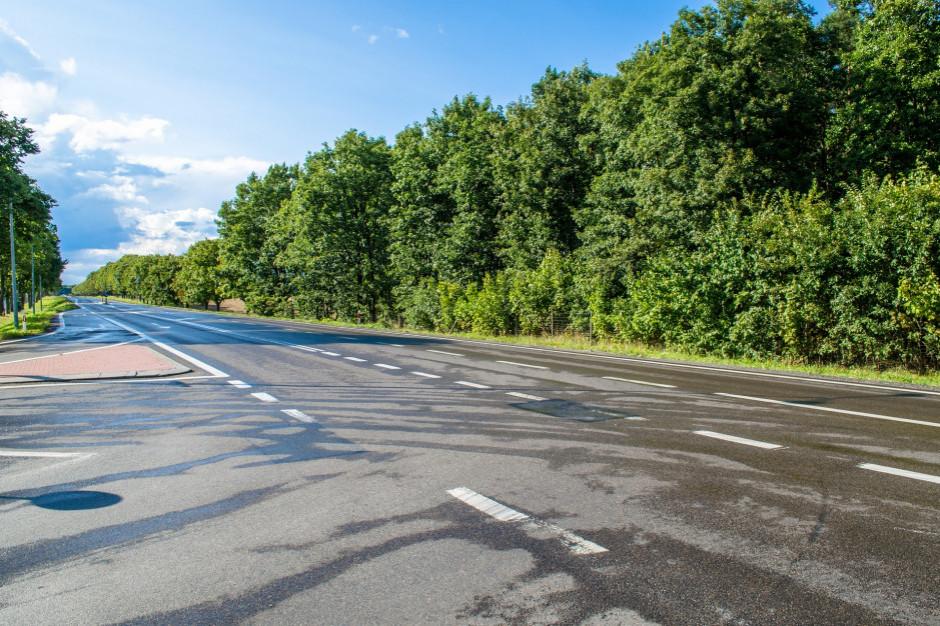GDDKiA w 2019 udostępniła kierowcom 460 km nowych dróg