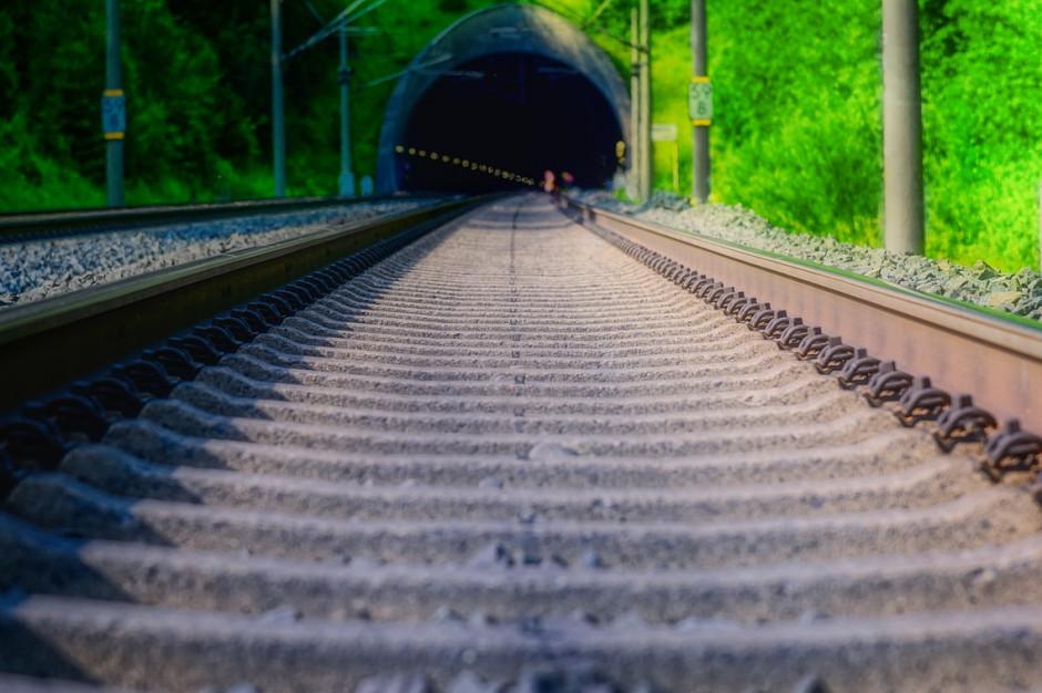 W pierwszej połowie 2020 roku badania środowiskowe tras kolejowych CPK