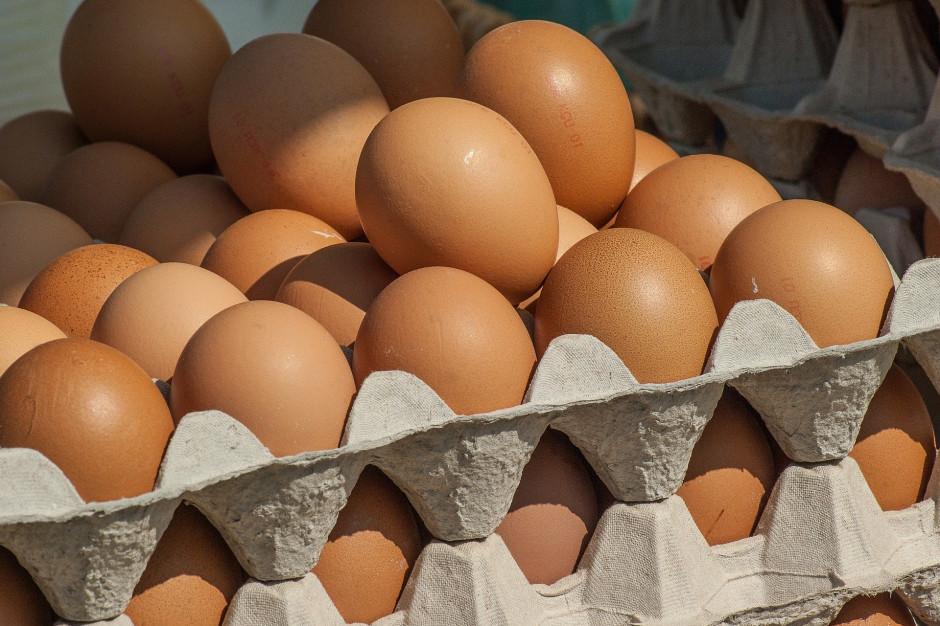 Ptasia grypa blokuje eksport drobiu i jaj